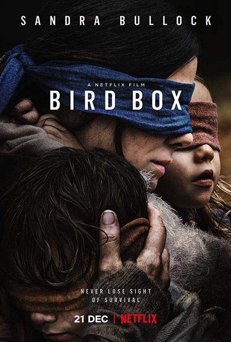 Sandra Bullock's New Netflix Horror Movie Bird Box First Trailer